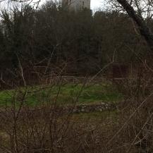 1-la torre del castello di montarrenti