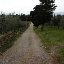 2-la strada che arriva alla Pieve dalla Riserva